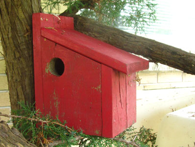 Birdhouse Comparisons Pros And Cons Of Birdhouse Designs