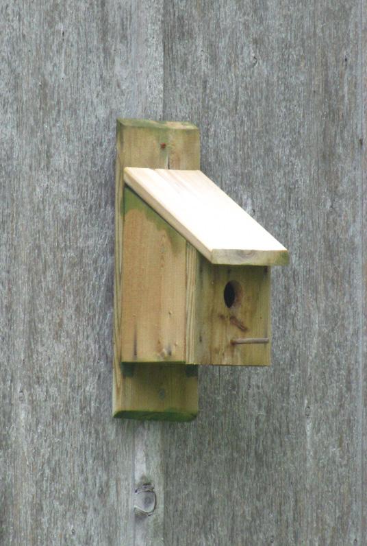 Cool Birdhouse Placement Mounting Methods Download Free Architecture Designs Scobabritishbridgeorg