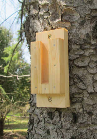 Birdhouse Placement Amp Mounting Methods