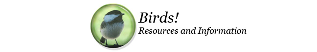 Bird Resources and Information